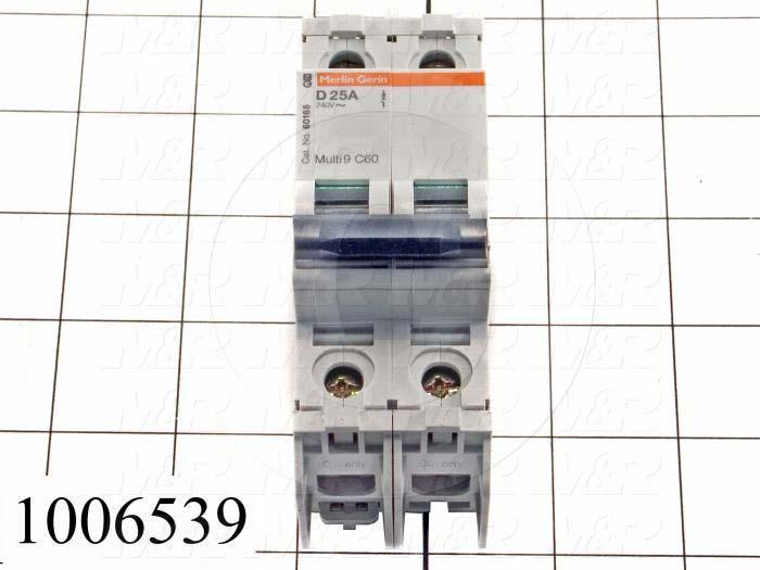 Circuit Breaker, 2 Poles, 25A, 240VAC, D Curve, UL 489 Listed
