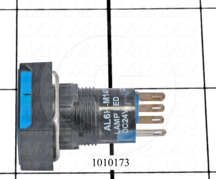 Pushbutton Switch, Momentary, Rectangle, Blue, DPDT, Incandescent, 24V