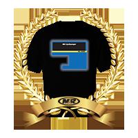 Digital Squeegee Awards winners logo